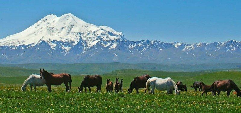 treking-odprava-elbrus