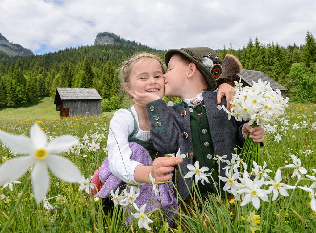 Rezultat iskanja slik za avstrija prazniki