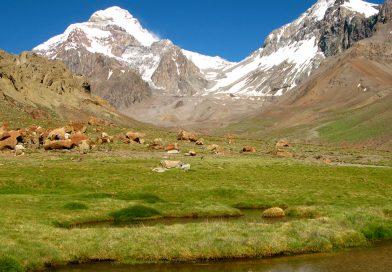 Odprava Aconcagua 6962 m