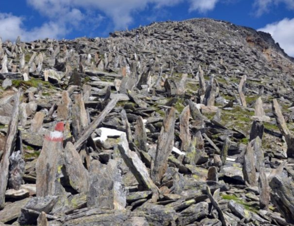 Vzpon na grosser Hafner 3076 m