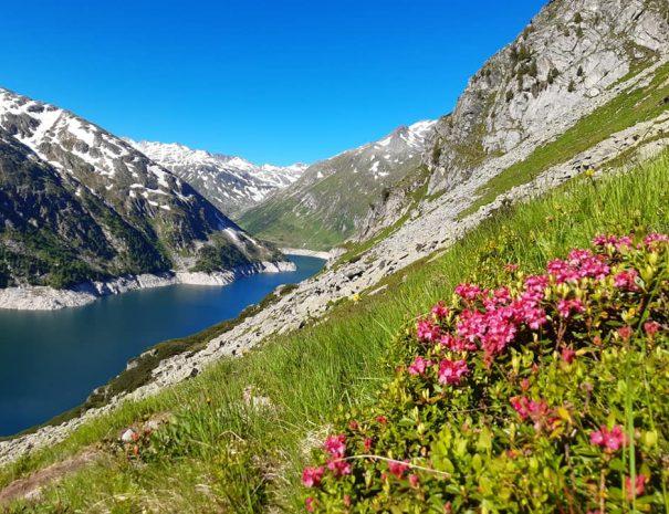 Vzpon na grosser Hafner 3076 m jezero